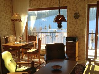 Vacation Apartment in Schoenwald im Schwarzwald (# 6078) ~ RA62630