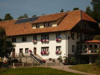 Vacation Apartment in Dachsberg - 753 sqft, max. 4 people (# 6168)