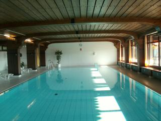Vacation Apartment in Schonach im Schwarzwald - 1 living room / bedroom, max. 4 people (# 6244)