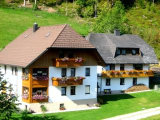 Vacation Apartment in Triberg im Schwarzwald - 624 sqft, 2 Bedroom (# 6479)