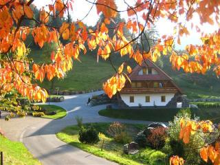 Vacation Apartment in Triberg im Schwarzwald - 753 sqft, 2 bedrooms, max. 6 persons (# 6502)