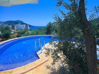 Likya View Villa - Phoebe