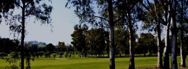 La Alqueria golf-course