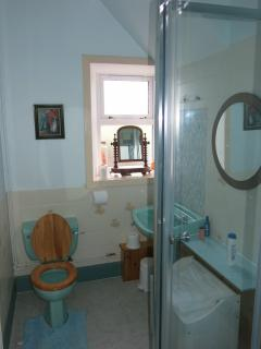 Second downstairs bathroom