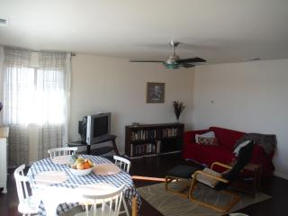 Bright Furnished Apt. in Quiet Upscale Residential