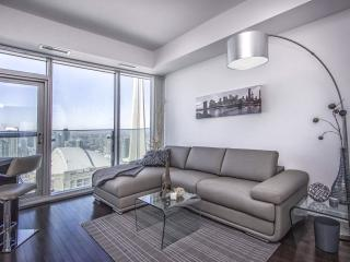 Downtown Luxurious 1 bdrm  Condo with a view
