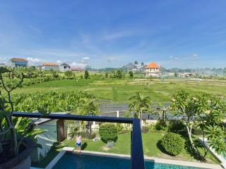 Rice field view 3 bed Villa Canggu