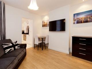 Stunning 1 bed flat in Southwark/ Zone 1 location