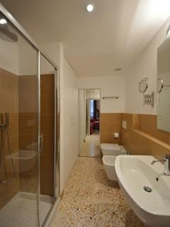 smaller second bathroom with shower connected with the living and dining area