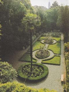 bird view of the garden