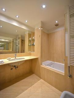 main marble bathroom with bathtub