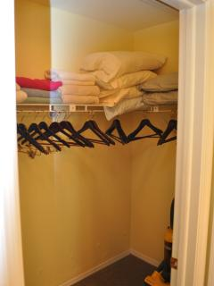 wWali-in Closet in Master Suite