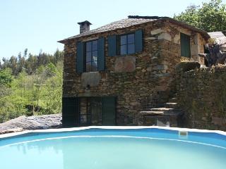 Villa in Cinfães - Oporto, Portugal 101802
