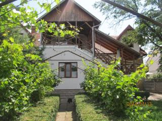City center villa near the fortress in Tirgu Mures