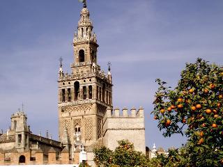 Beautiful apartment Sevilla center VFT-00488