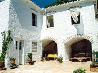 Cactus Villa