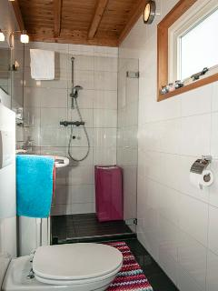 Badroom with toilet and great shower.