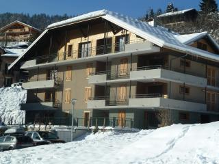 Le Clos de la Fontaine, new 4 bedroom, 2 bathroom apartment near ski lift