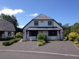 Parc Teifi Cottage 2, Pontrhydfendigaid
