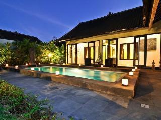 Luxury 4/8 BR villa,5 min to Double Six,Seminyak