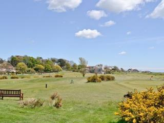 Golf course infront of house with yellow gorse