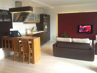 1bedroom modern design apartment rent, Vilnius