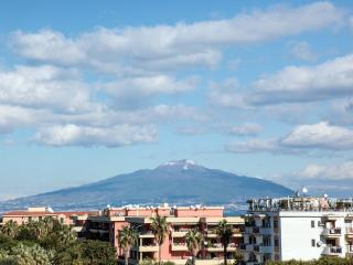 View on Mount Vesuvius