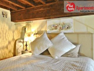 The Dante Apartment nearby Pitti Palace - 6044, Florencia