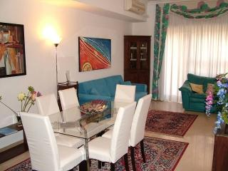 Elegant apartment well connected, free garage, Rome
