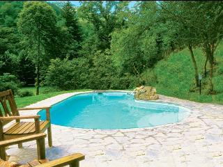 5 bedroom Villa in Borgo San Lorenzo, Mugello, Florentine Hills, Italy : ref