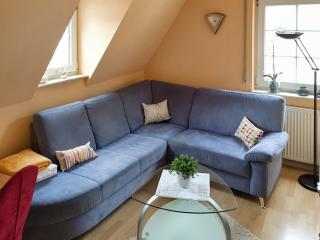 Cheery flat with terrace in Traben-Trarbach - near the countryside and the river Moselle, bike rental included