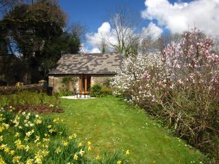 """The Tamar Orchard Barn"" – studio in Cornwall with terrace, garden & mountain views, Gunnislake"