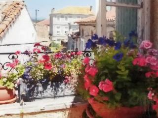 """Maison de Grandmere"" - Charming village house in Aude with terrace, near Canal du Midi & beaches, Pouzols-Minervois"