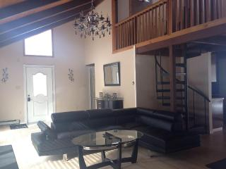 ELEGANT, CONTEMPORARY 3 BEDROOM LOFT, FREE  WIFI,, Bushkill