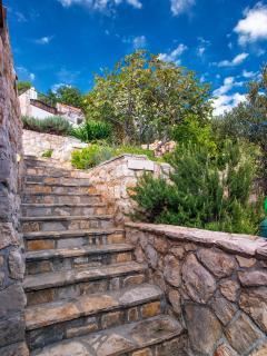 steps on terrace