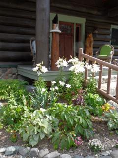 Front entrance in full bloom. Front porch greeter: chainsawed Aunt Sara Bear.