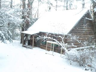 Cabin on White Water Toccoa River!