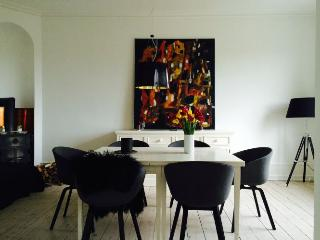 Lovely large Copenhagen apartment near the park