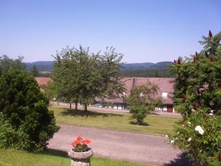 Zicht vanaf het voorterras over het dorpsplein in het glooiende landschap