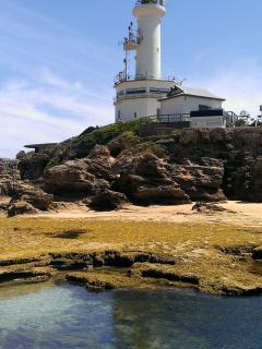 Explore the rock pools below the historic lighthouse