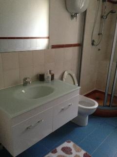 bagno con doccia primo piano