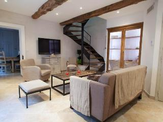 Fully renovated loft in the center of Valbonne village!