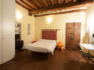 Lovely studio in characteristic Florence district, easy access to Ponte Vecchio and Palazzo Pitti, Florencia