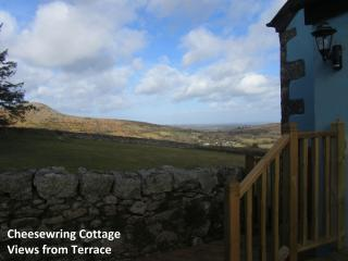 Views from the deck accross to Sharp Tor