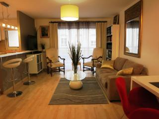 56 m2 + 16 m2 terrasse standing, Ile-de-France