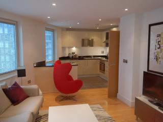 Two Bedroom property A508 canary wharf, London
