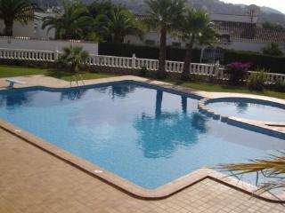 Zwembad met duikplank en groot zonneterras met tuin,