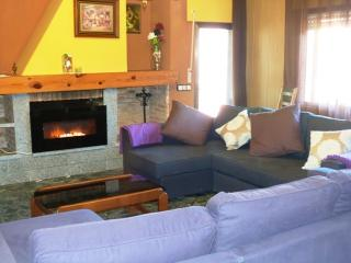Salon, zona de estar con chimenea y dos grandes sofa-chaislonge
