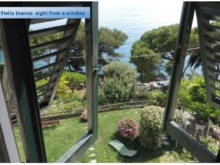 Stella Bianca  Four apartments facing the Ligurian sea, with garden and pool