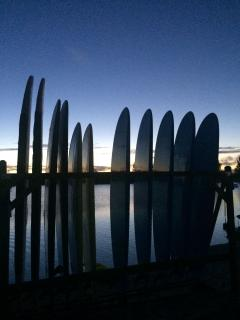 SUP Paddleboards available to rent at Cable Factory on premises